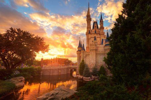 A Magical Kingdom