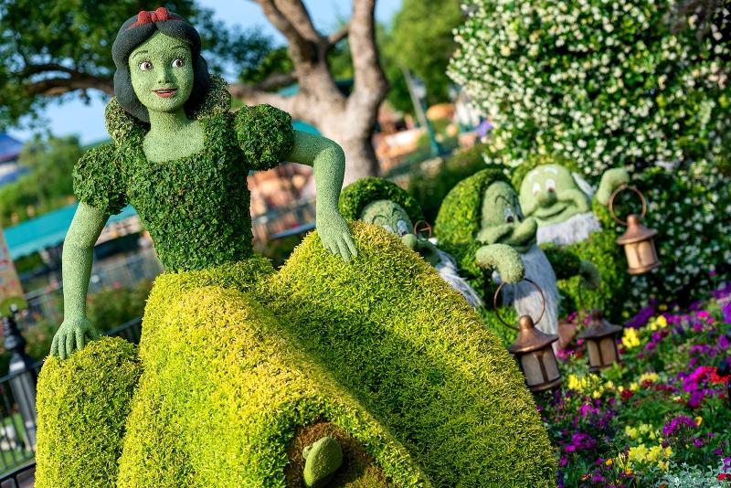 Snow White Flowers & Dwarfs