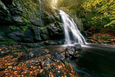 Spruce Flats Falls Autumn